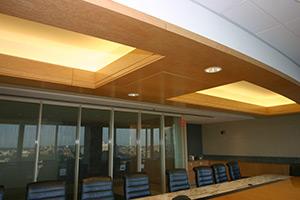 Holland & Knight ceiling lights