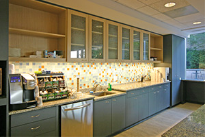 Holland & Knight built in kitchen