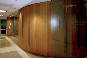 Boston University Sargent Center wall