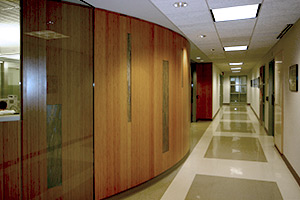 Boston University Sargent Center walls